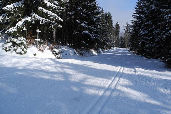 Obwohl dieses Gebiet vergleichsweise schneesicher ist, war es verblüffend leer
