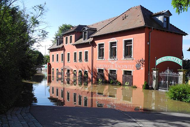 05.06., früh: Zwischen Wachwitz und Blasewitz