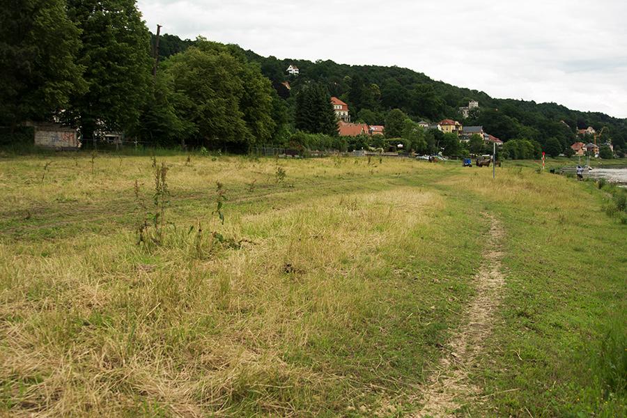 Flurstücke des NABU in Wachwitz