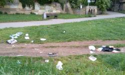 Müll Dresdner Elbwiesen